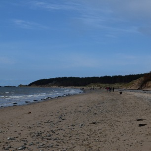 Nearby Newborough beach